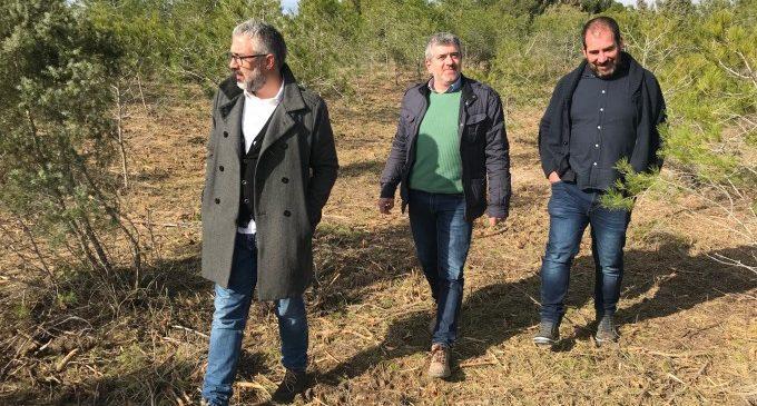 La Diputació fa balanç de la protecció de l´ecosistema valencià i la prevenció d´incendis en el Dia dels Boscos