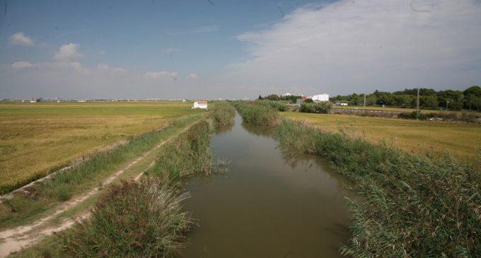 Licitació de la neteja i conservació dels canals i séquies del llac
