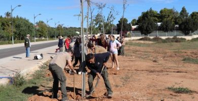 Rocafort en Verd:  conscienciació i participació  per a un medi ambient sostenible