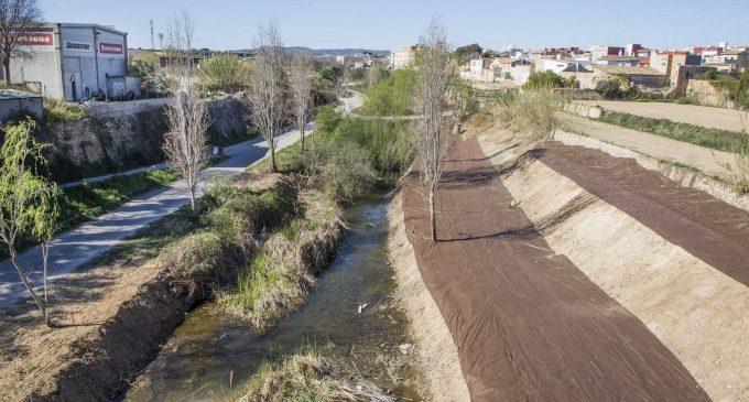 Un tractament innovador pretén acabar amb l'excés de canyes en el barranc de Picassent