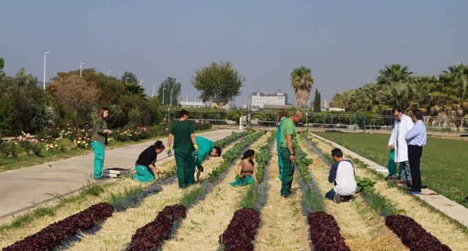 L'Escola de Capatassos de la Diputació organitza la I Fira Professional Agrícola i de Jardineria