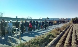 """COAG denuncia la """"destrucción"""" de 60.000 m2 de huerta productiva por la ampliación de la V-21"""