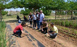Paiporta adjudica el uso de 19 huertos urbanos para personas jubiladas