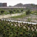 Els parcs i jardins de València amplien l'horari perquè la ciutadania puga disfrutar-los més temps