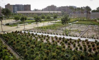 Més pressupost en 2019 per als futurs pulmons verds de València