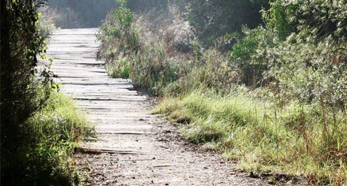 El Ayuntamiento encarga los proyectos para hacer accesibles los cuatro itinerarios norte de la Devesa