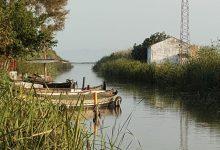 L'Ajuntament torna a demanar una assignació d'aigua del riu Xúquer per a l'Albufera