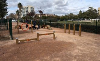 Augmenten les zones de socialització per a gossos a València