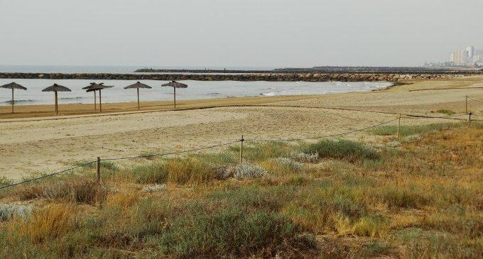 La Diputació impulsa la conservació i protecció dels ecosistemes dunars
