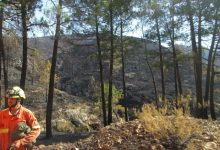 Los sindicatos de bomberos piden una reunión urgente con Puig
