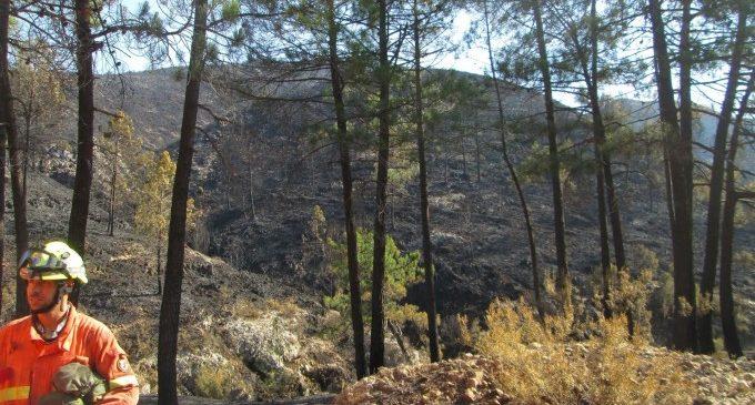 """Oltra: """"S'estan fent passos"""" davant la situació de bombers forestals"""