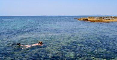 Una app informarà de l'ocupació de les platges valencianes