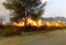 La ràpida actuació de la Policia Local i els Bombers eviten la propagació d'un incendi en la Mont-Ravana