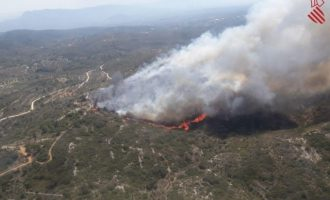 Puig defiende la gestión del incendio de Llutxent