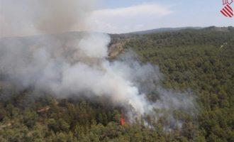 Emergencia Climática y Transición Ecológica amplía el personal dedicado a la prestación del servicio de vigilancia preventiva contra incendios