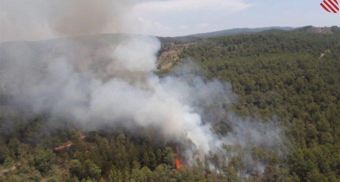 La Comunitat Valenciana, zona de risc de grans incendis forestals