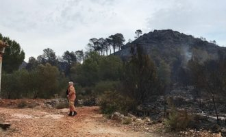Estabilizado el incendio de Llutxent