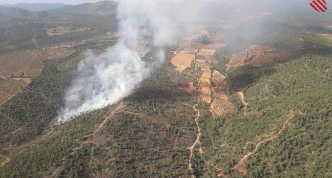 Estabilitzat l'incendi forestal de Requena