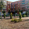 Obertes al públic les noves zones enjardinades d'Amparo Arce Millares i plaça Musico Gans