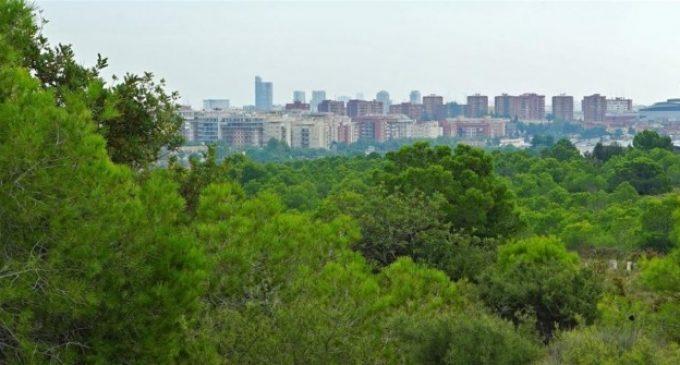 """Col·lectius ecologistes insten a veïns de Paterna a portar el seu """"malestar"""" per Intu Mediterráni al ple"""