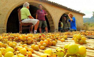 Massarrojos vuelve al pasado con la V Escaldà de uva en su riurau