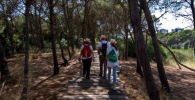 117 personas han participado en el voluntariado de la Albufera