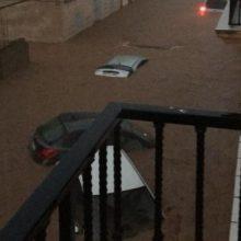 Crisi i 'partidisme': defensar l'empresa de la listeriosi o aprofitar inundacions