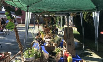 El Mercado de Roca, una visita obligatoria para conocer la huerta