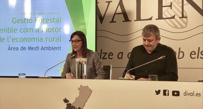 La Diputació de València inverteix en una gestió forestal sostenible