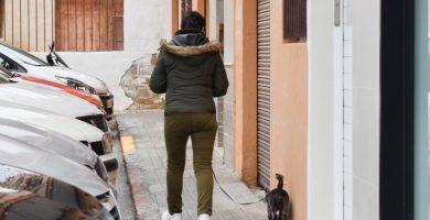 Els gossos guanyen protagonisme en la neteja de l'espai públic