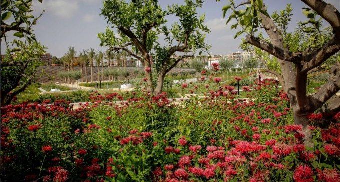 El Parc Central de València obri les seues portes el dilluns