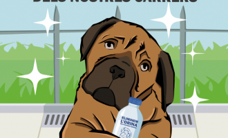 Alboraia llança una campanya per a eliminar l'orina dels gossos al carrer