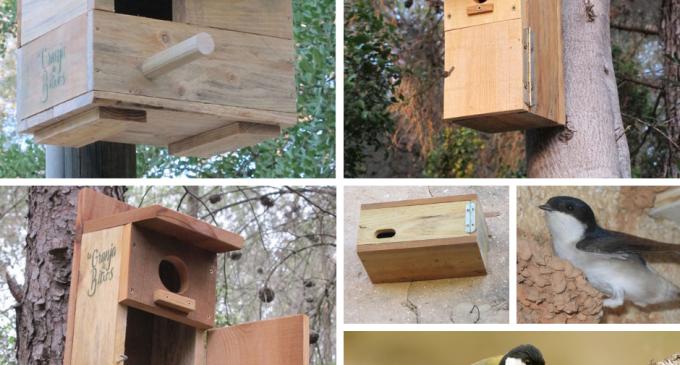 Xirivella instal·larà caixes niu i refugis per a la fauna insectívora
