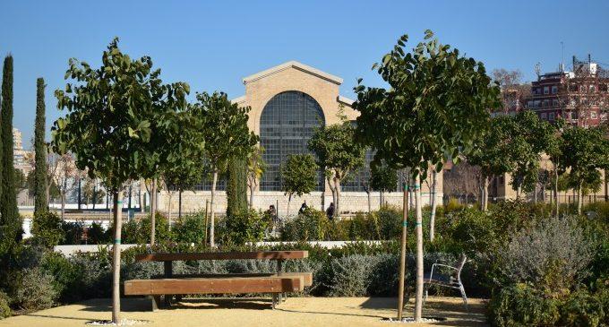 Més d'11 hectàrees de zones verdes en l'acabat d'estrenar Parc Central