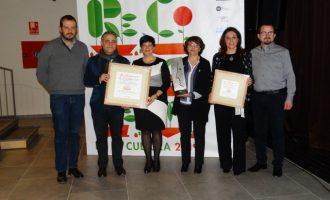 La Diputació reconoce el trabajo de la agencia AVIVA de Silla en el fomento del valenciano
