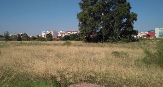 El jardín provisional del Parque de Desembocadura protegerá los árboles de especial interés