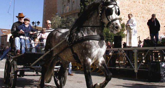 L'associació de la Benedicció d'Animals de Sant Antoni Abat de Puçol compleix deu anys