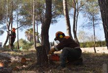Les brigades de la Diputació protegeixen de possibles incendis els habitatges de Bixquert, Xàtiva