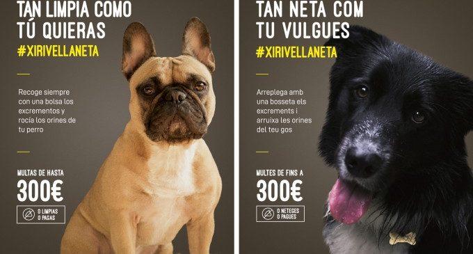 Comienza la campanya 'Xirivella tan neta com tu vulgues'