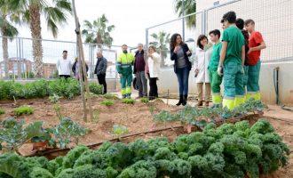 Un conveni entre Ajuntament, ESPAI i IES Andreu Alfaro afavoreix la formació d'11 joves
