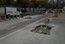 Comença la plantació de més de 3.000 arbres per tots els barris
