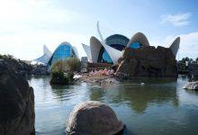 El Oceanogràfic de València, una experiencia única en el acuario más grande de Europa