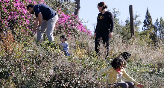Primavera a La Costera: Què fem amb el fem?