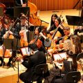 El segundo Ciclo Bankia de Orquestas de la Comunitat Valenciana ofrecerá 12 recitales