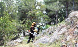 Les brigades forestals de la Diputació protegeixen de possibles incendis el nucli urbà d'Ador