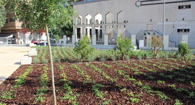 El nou jardí de Rubén Darío reinterpreta l'estructura de l'horta