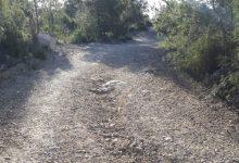 Paterna adequa els circuits forestals d'entrada a la Vallesa