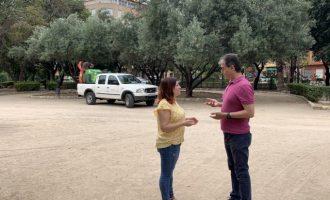 Alzira incrementa els tractaments per pal·liar el mosquit tigre i la mosca negra