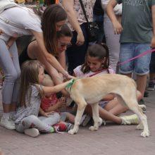 Alaquàs celebra la VII Fira Amics dels Animals