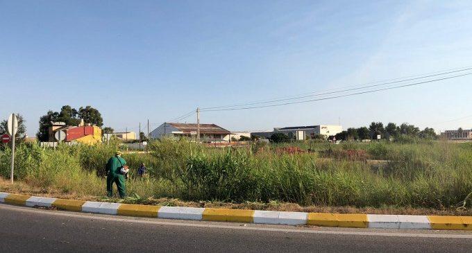 L'Ajuntament de Sueca ha engegat els treballs de neteja i adequació dels solars urbans i les entrades de la ciutat